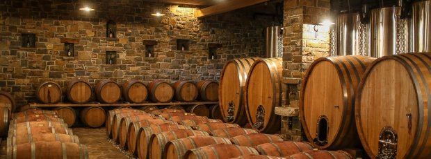 Wine roads and wine cellar visit koper