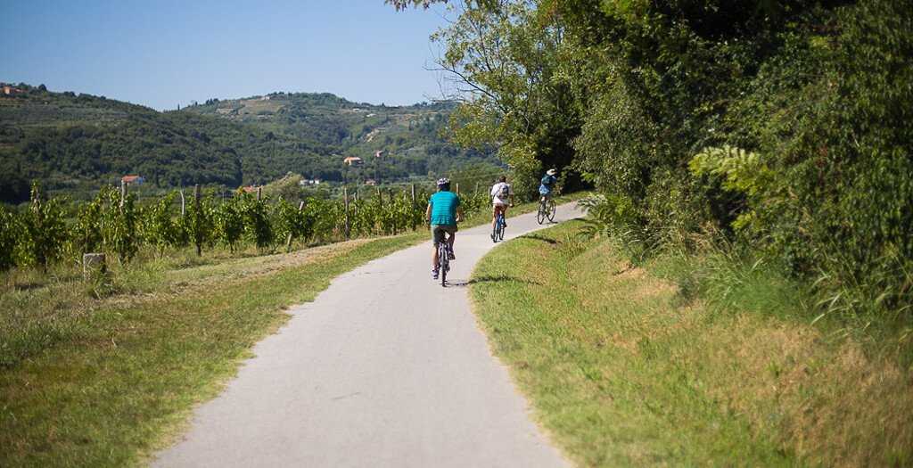 Biking Tour In The Dragonja Valley