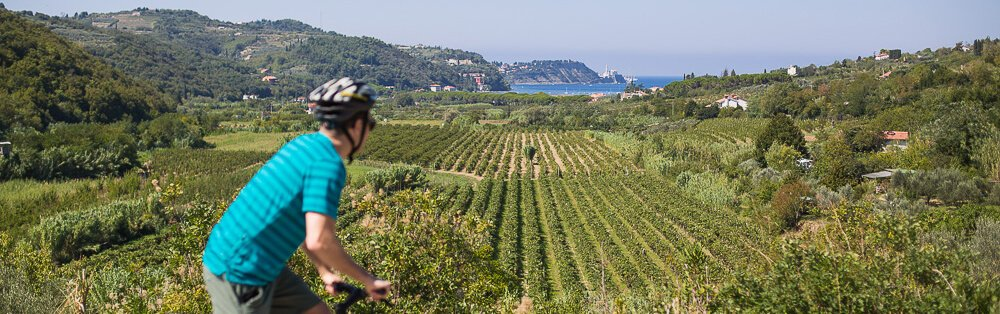 Parenzana Bike & Taste Tour